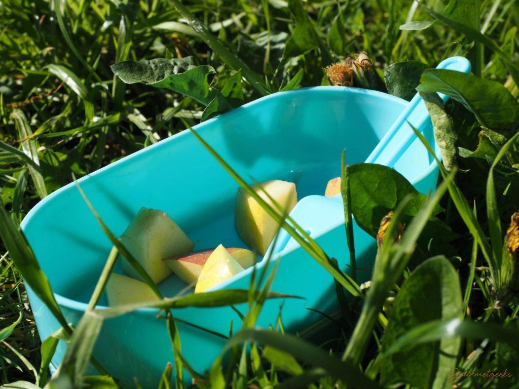 Picknick mit Obst - es braucht nicht viel