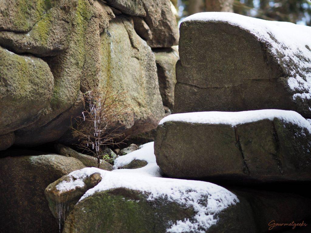 Granit, Schnee und Bäumchen